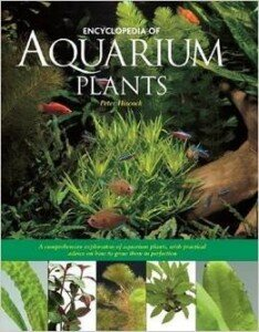 plants for fish tanks book