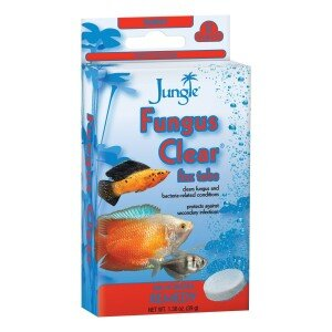 Jungle Fungus Clear tablets